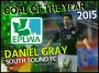 "Daniel Gray's strike voted by fans as ""EPLWA Goal of the Year"" for 2015"